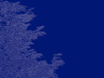 3d rendering of an outlined tree blueprint isolated on blue back. Ground Royalty Free Stock Photo