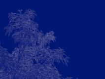 3d rendering of an outlined tree blueprint isolated on blue back. Ground Royalty Free Stock Photography