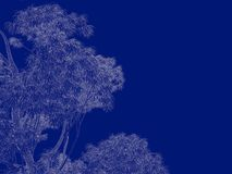 3d rendering of an outlined tree blueprint isolated on blue back. Ground Royalty Free Stock Photos