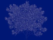 3d rendering of an outlined tree blueprint isolated on blue back. Ground Stock Photography