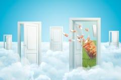 3d rendering pięć drzwi stoi na puszystych chmurach, jeden drzwiowy prowadzić zielenieć gazon z dużym plastikowym słoju rozrzucan royalty ilustracja