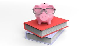 3d rendering piggy bank on books. 3d rendering pink piggy bank on books Stock Photos