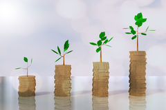 3D rendering of piles of coin growing trees Royalty Free Stock Photo