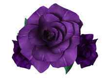 3D Rendering Purple Roses on White. 3D rendering of three purple roses isolated on white background Stock Images