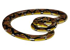 3D Rendering Reticulated Python on White Royalty Free Stock Photography