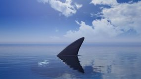 3D rendering of shark fin above wate Royalty Free Stock Photography
