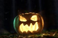 3d rendering of shiny halloween Jack-o-Lantern pumpkin at darken. Forest Stock Photos