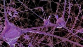 3D rendering sieć neuron komórki i synapses w mózg przez którego elektryczni bodzowie i zwalnia przepustkę royalty ilustracja