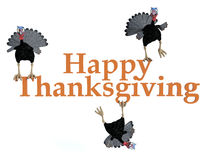 3D rendering of 3 silly toon turkeys on the text. Three funny silly looking cartoon turkeys sitting and hanging on the text Happy Thanksgiving, 3D rendering royalty free illustration