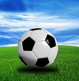 3D rendering,  soccer ball isolated on blue background. royalty free stock photo