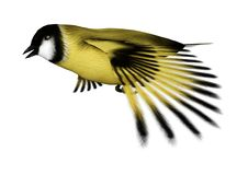 3D Rendering Songbird Goldflinch on White. 3D rendering of a flying songbird goldfinch isolated on white background Royalty Free Stock Photo