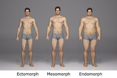 3D Rendering : 3 type of male body ,front view vector illustration