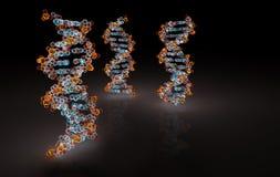 3D rendering Trzy DNA Helix Zdjęcie Stock