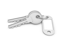3d rendering of two isolated silver keys on a key ring with a blank label. Behind. Safety and protection. Keep information locked. Password protected entry Royalty Free Stock Photos