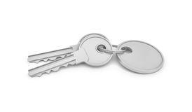 3d rendering of two isolated silver keys on a key ring with label. Safety and protection. Keep information locked. Password protected entry Stock Image