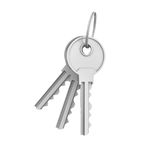 3d rendering of two isolated silver keys on a key ring Royalty Free Stock Photos