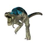 3D Rendering Tyrannosaurus Rex on White. 3D rendering of a dinosaur Tyrannosaurus Rex   on white background Stock Photo