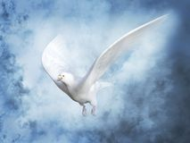 3D rendering of a white peace dove in heaven. 3D rendering of a white peace dove or pigeon flying in heaven with clouds around it Royalty Free Stock Photo