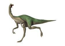 3D renderingu dinosaur Gallimimus na bielu ilustracja wektor
