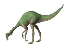 3D renderingu dinosaur Gallimimus na bielu ilustracji
