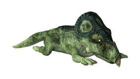 3D renderingu dinosaur Protoceratops na bielu Fotografia Stock