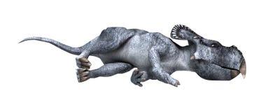 3D renderingu dinosaur Protoceratops na bielu Zdjęcie Royalty Free