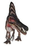 3D renderingu dinosaur Spinosaurus na bielu Obrazy Royalty Free