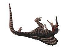 3D renderingu dinosaur Spinosaurus na bielu Obraz Stock
