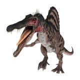 3D renderingu dinosaur Spinosaurus na bielu Obrazy Stock