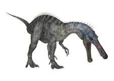 3D renderingu dinosaur Suchomimus na bielu Zdjęcia Stock