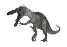 3D renderingu dinosaur Suchomimus na bielu Obrazy Royalty Free