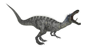 3D renderingu dinosaur Suchomimus na bielu Zdjęcia Royalty Free