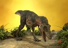 3D renderingu dinosaur Tarbosaurus Obrazy Royalty Free