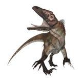 3D renderingu dinosaur Utahraptor na bielu Zdjęcie Royalty Free