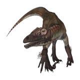 3D renderingu dinosaur Utahraptor na bielu Obrazy Stock