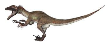 3D renderingu dinosaur Utahraptor na bielu Obraz Stock