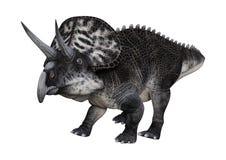 3D renderingu dinosaur Zuniceratops na bielu royalty ilustracja