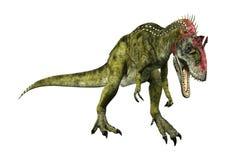 3D renderingu dinosaura Cryolophosaurus na bielu Fotografia Royalty Free