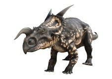 3D renderingu dinosaura Einiosaurus na bielu Obrazy Royalty Free