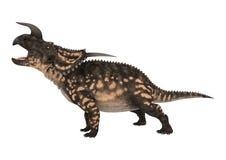 3D renderingu dinosaura Einiosaurus na bielu Obraz Royalty Free