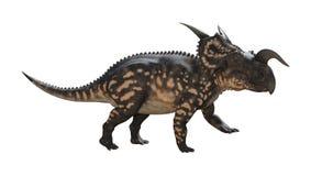 3D renderingu dinosaura Einiosaurus na bielu Fotografia Stock