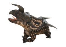 3D renderingu dinosaura Einiosaurus na bielu Zdjęcia Royalty Free