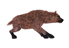 3D renderingu hiena na bielu ilustracja wektor
