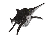 3D renderingu Ichthyosaur Shonisaurus na bielu Obraz Royalty Free