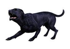 3D renderingu labradora pies na bielu obrazy stock