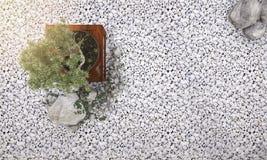 3d renderingu natury tło składał się bonsai drzewa w japończyka ogródzie Obrazy Royalty Free