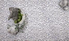 3d renderingu natury tło składał się skałę i drzewa w zen ogródzie Obraz Royalty Free