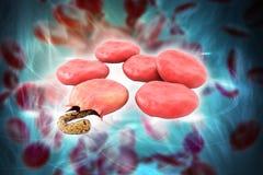 3d rendeu o efeito do vírus da malária nos glóbulos no fundo da cor ilustração royalty free