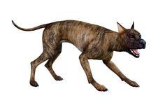 3D rendição Grat Dane Dog rajado no branco ilustração do vetor