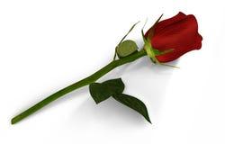 3D rendono della rosa rossa Fotografia Stock
